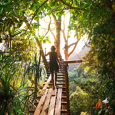 two women on a bridge in the jungle tree tops
